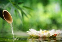odontoiatra.it, naturopatia, odontoiatria naturale